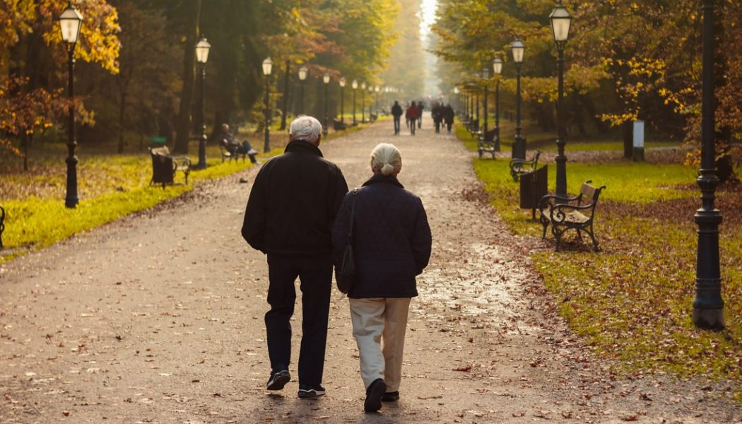 Couple walking in a park in the evening