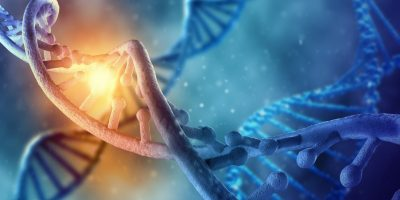 Gene transformation